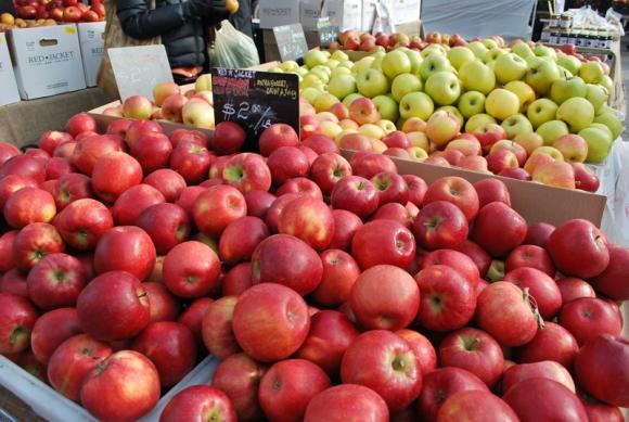 Manzanas de todos los colores y variedades / Apples, apples everywhere. Union Square Farmer's Market