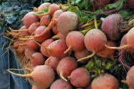 Remolachas amarillas / Yellow beetroots. Union Square Farmer's Market.