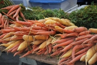 Zanahorias de colores / Colored carrots. Union Square Farmer's Market.